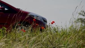 Auto op snelweg met klaproos - beeld bij mobiliteitsgarantie